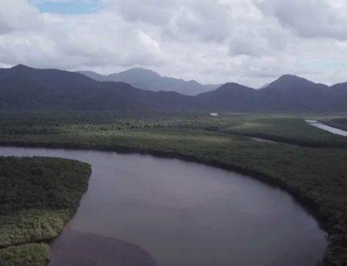 Curtas metragens demonstram sensibilidade e retratam a proximidade dos rios com os moradores da Baixada Santista