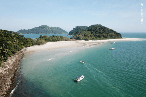 A potência da Educação ambiental para estimular a consciência crítica em ambientes costeiros